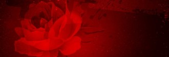 Rose Website Banner