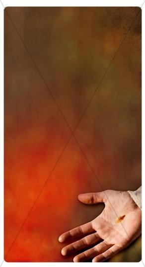 Jesus Hand Banner Widget