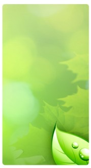 Green Leaves Banner Widget