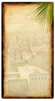 Jerusalem Banner Widget