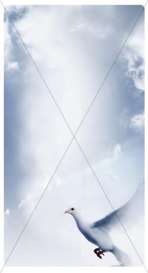 Holy Spirit Banner Widget