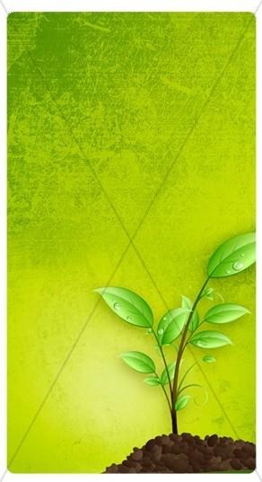 Growth Banner Widget