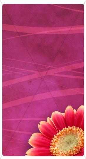 Pink Flower Banner Widget