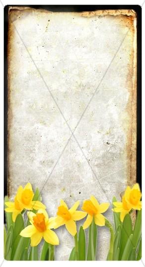 Yellow Flowers Banner Widget