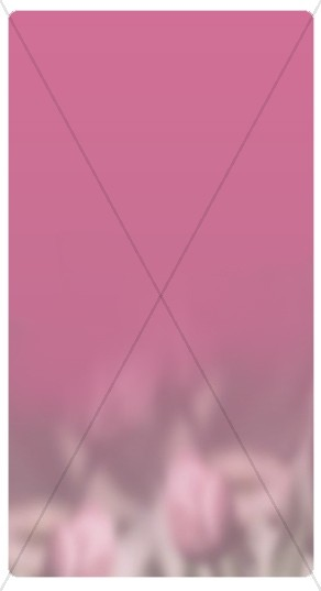 Pink Banner Widget