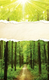 Forest Nature Church Bulletin Cover