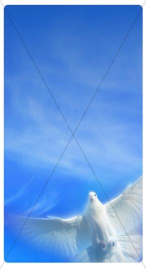 Spirit Banner Widget