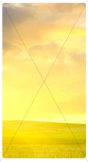Evening Sky Banner Widget