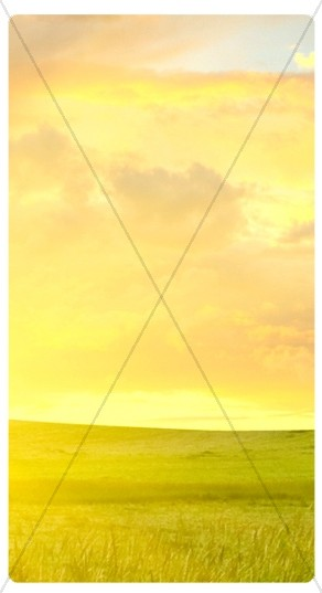 Sunrise Banner Widget