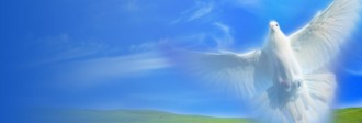 Holy Spirit Website Banner