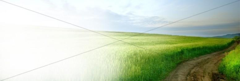 Green Field Website Banner