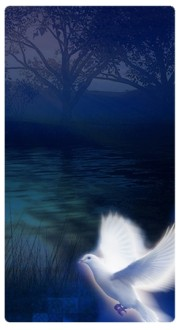 Spirit Dove Banner Widget
