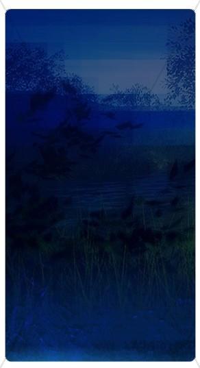 Midnight Blue Banner Widget