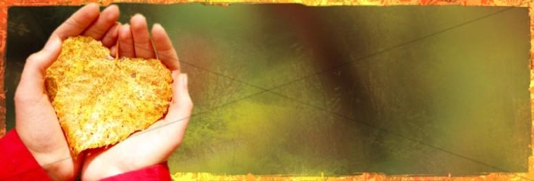 Heart Leaf Website Banner
