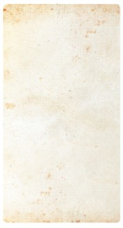 Light Parchment Paper Banner Widget