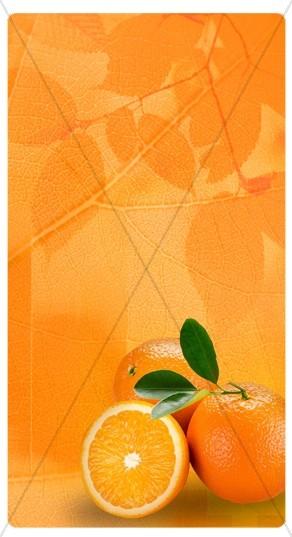 Orange Fruit Banner Widget