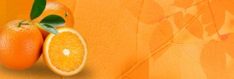 Oranges Website Banner