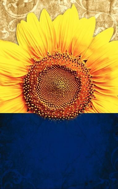 Sunflower Church Bulletin