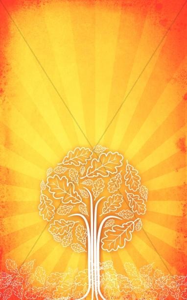Orange Tree Bulletin