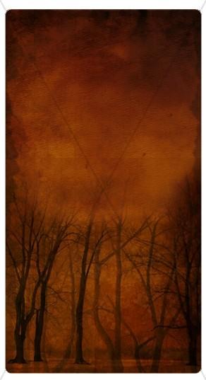 Winter Trees Website Sidebar