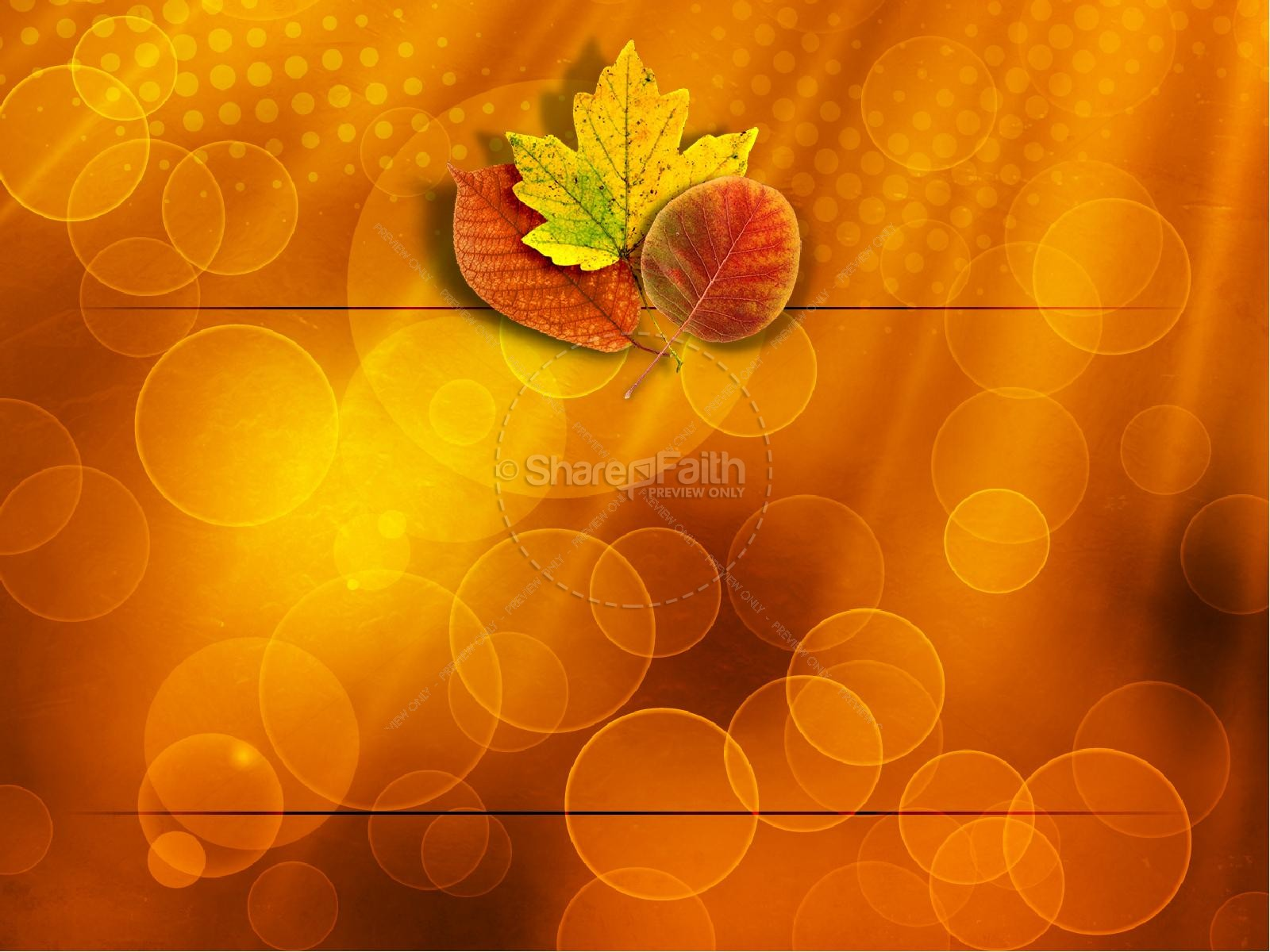 Happy Thanksgiving PowerPoint Template | slide 9