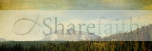 Mountain View Website Banner
