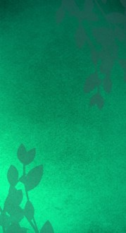 Green Website Sidebar