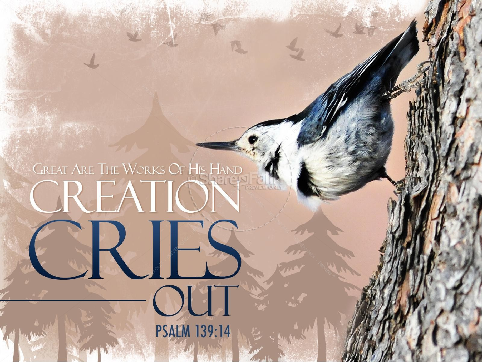 Creation Cries Out PowerPoint