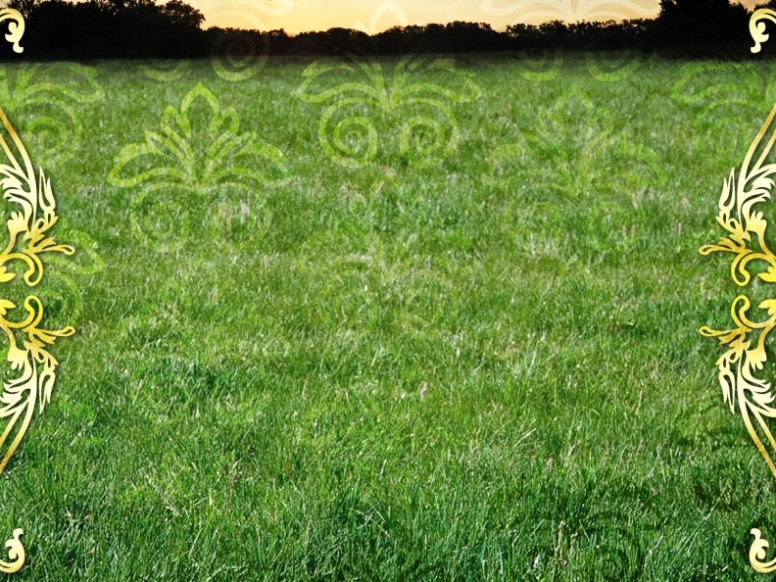 Green Design Background
