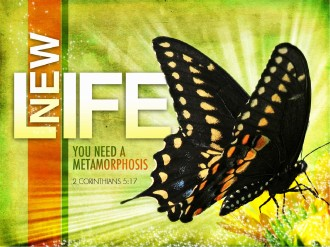 New Life PowerPoint