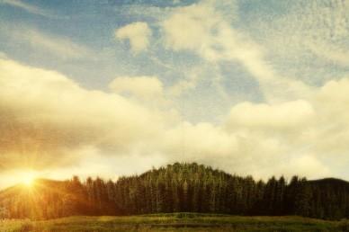 Nature Field Worship Video Loop