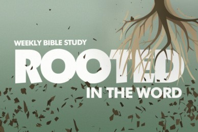 Bible Study Video Loop | Church Motion Graphics