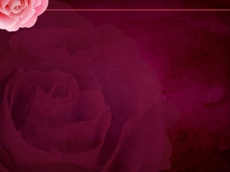 Rose Worship Template