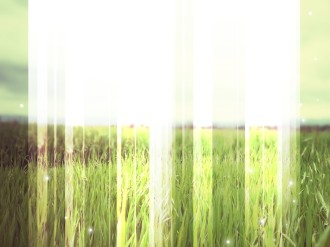 Green Fields Worship Background
