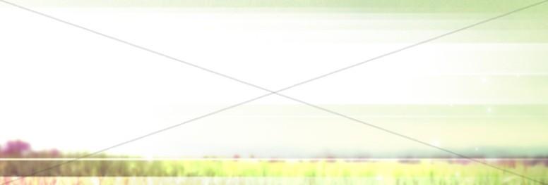 Mission Field Website Banner
