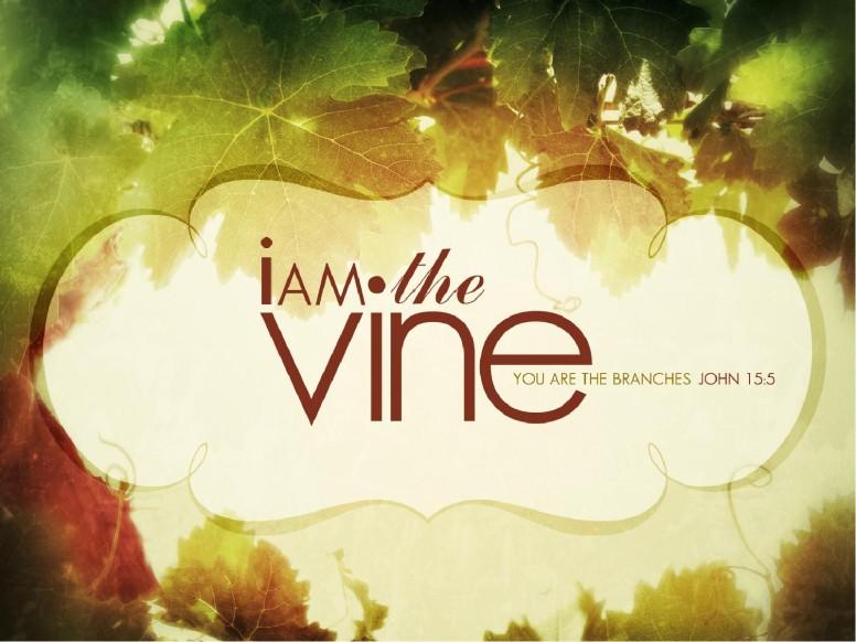 The Vine PowerPoint Sermon