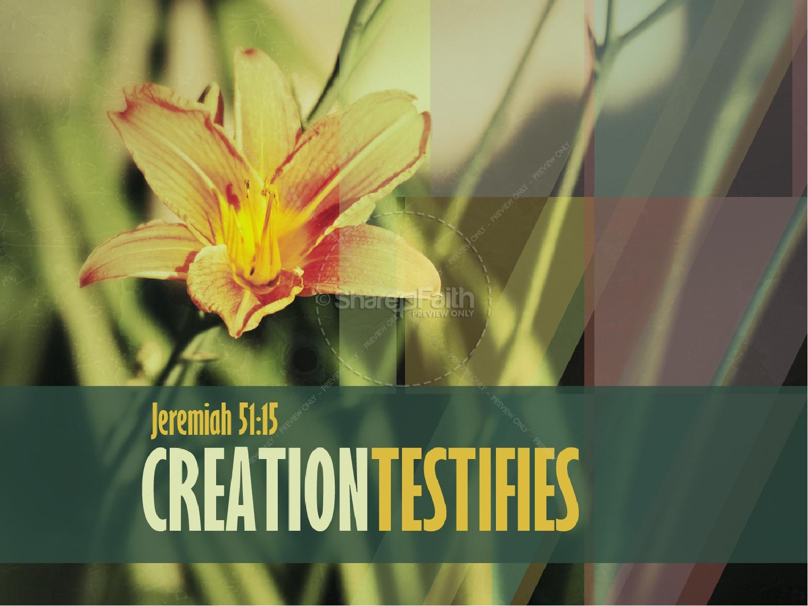 Creation Testifies PowerPoint Sermon Template | slide 1