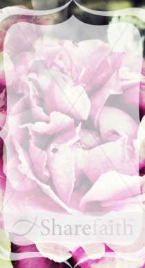 Flower Petals Website Sidebar