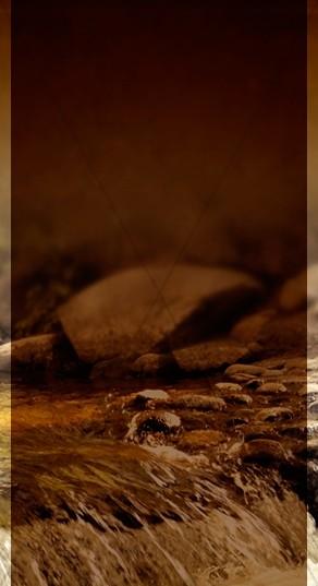 Water of Life Website Sidebar