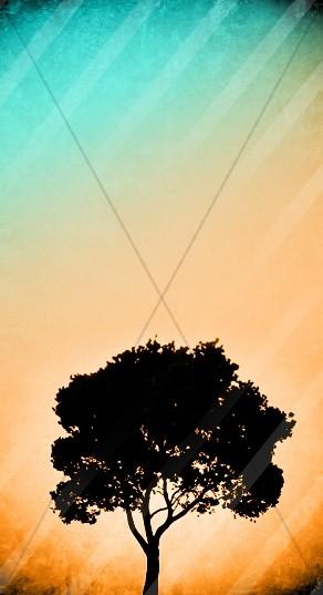 Tree of Life Website Sidebar