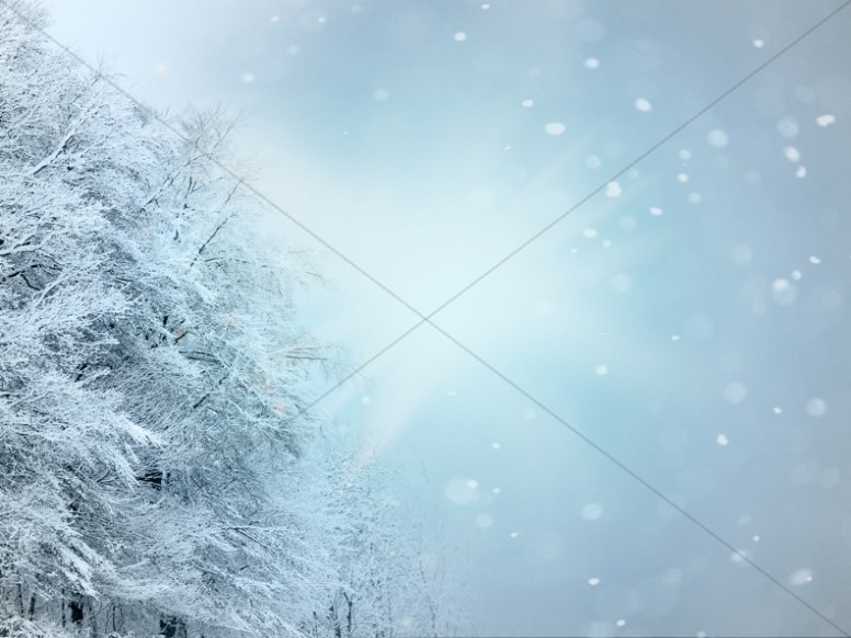 Christmas Snow White Worship Background HD