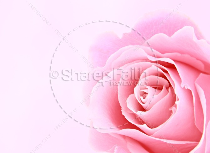 Beautiful Flower Religious Stock Images
