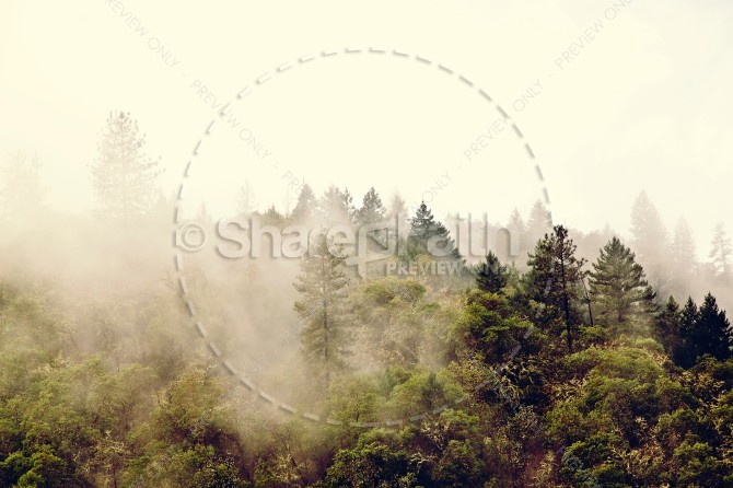 Forest Scene Christian Stock Photos