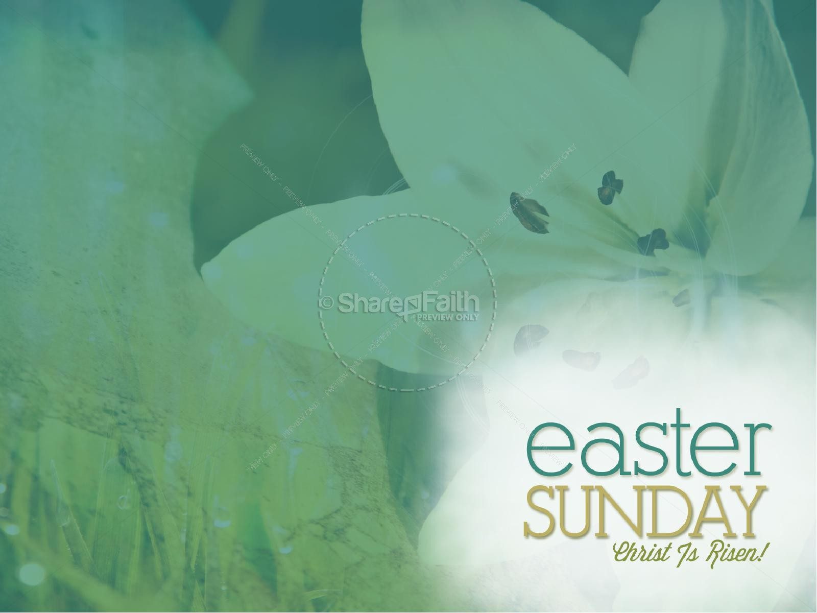 Easter Sunday Lily PowerPoint