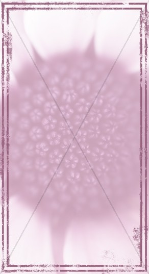Flower Sidebar Widget