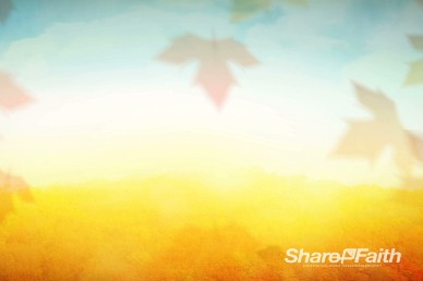 Falling Leaves Motion Video Background