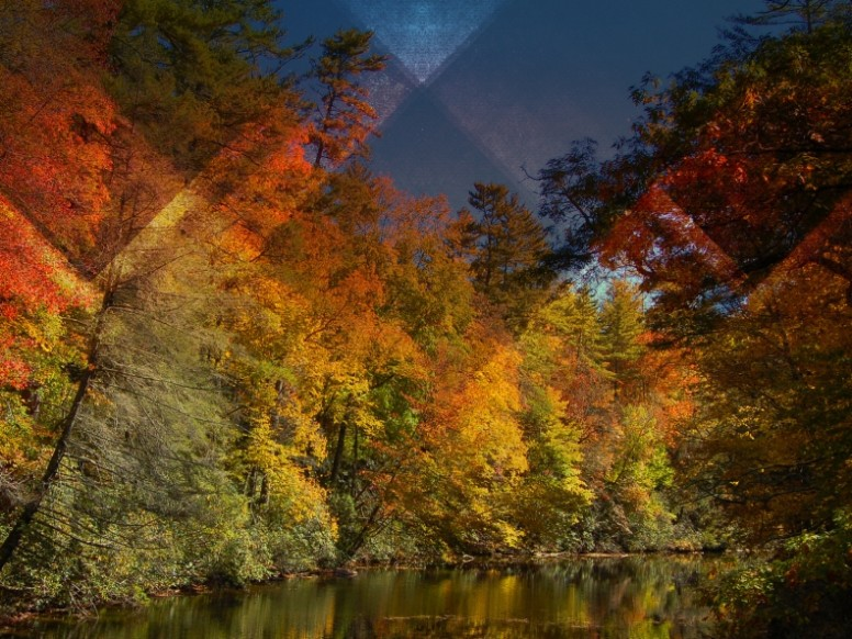 Triangle Trees Worship Background