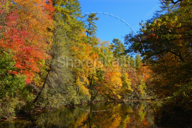 Autumn Trees Beside Stream Christian Stock Photo