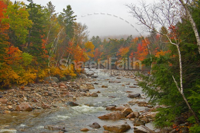 River Through Trees Christian Stock Photo