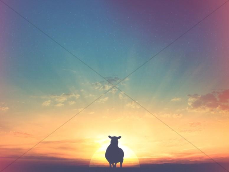 lamb and landscape sunset christian stock photo
